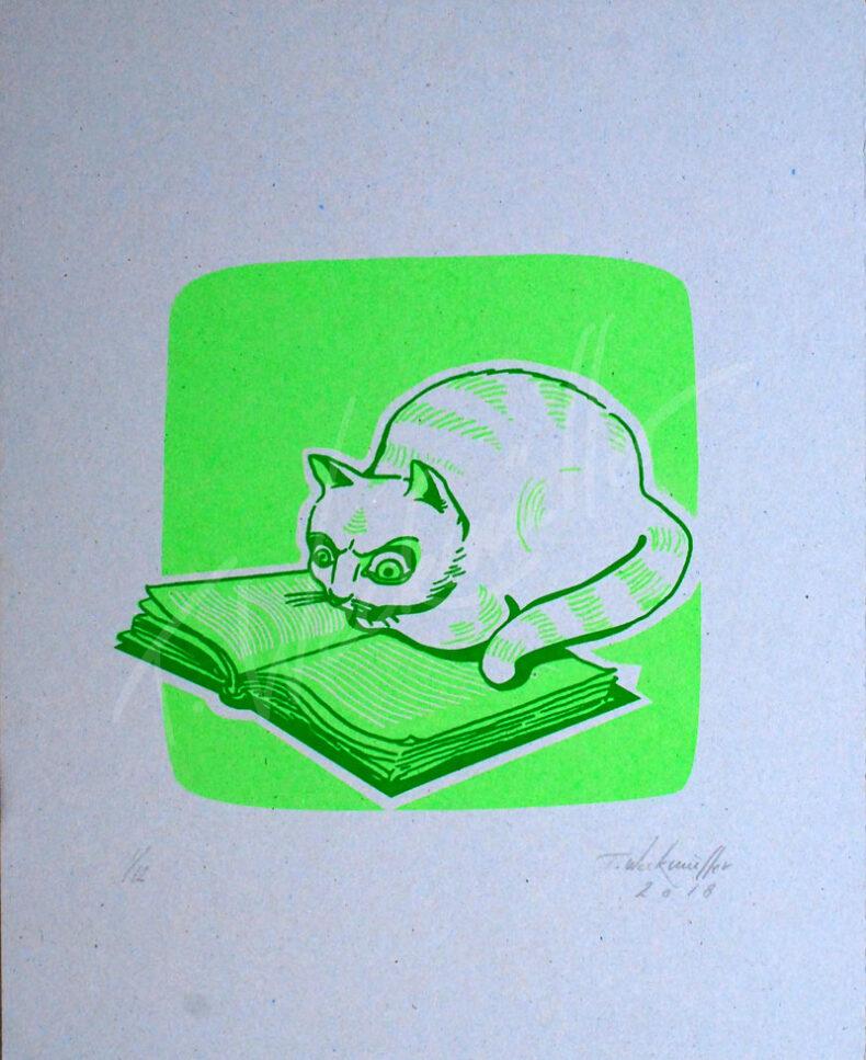 Lesende Katze – »Simone de Beauvoir – das andere Geschlecht«